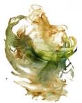 DanseLaura1